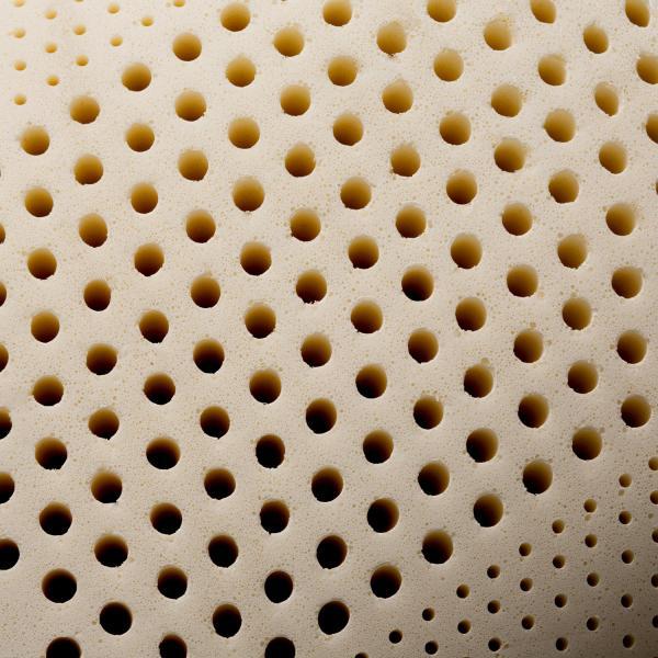 Zoned Latex cutaway close up